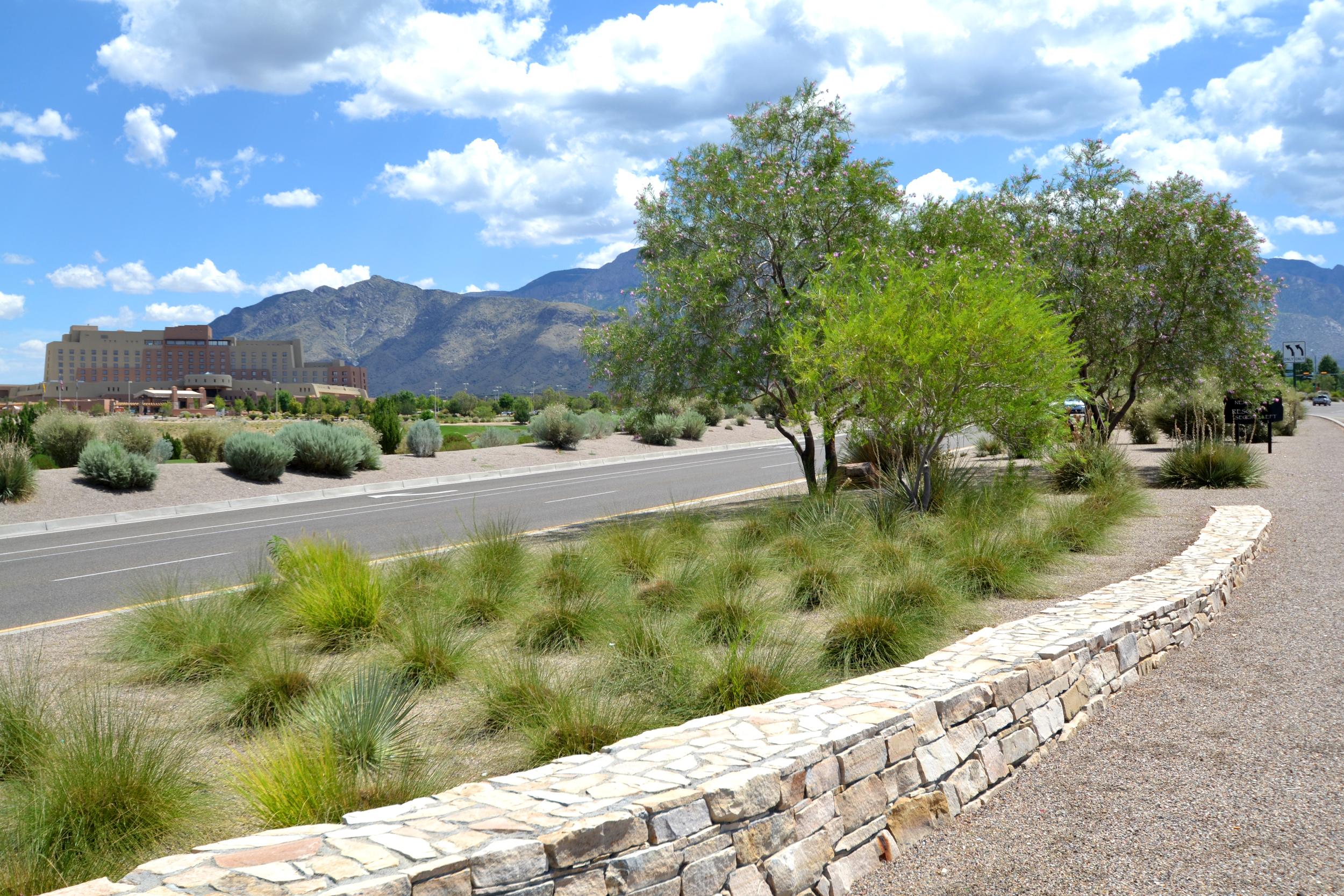 Stone wall, ornamental grasses, native trees