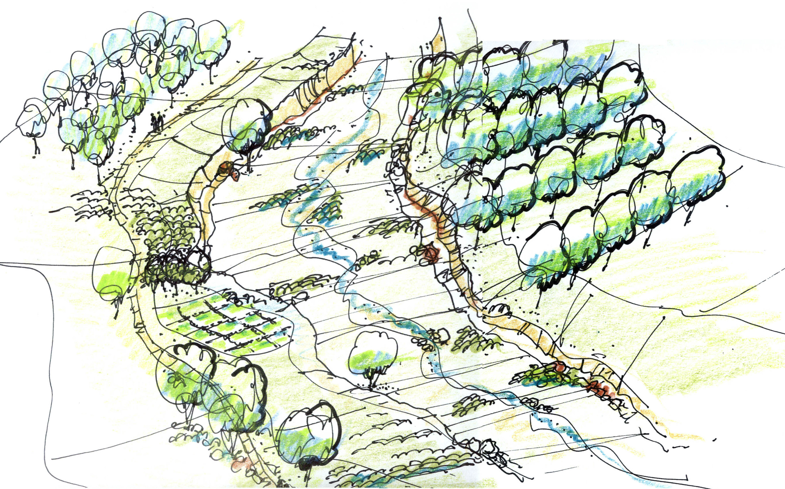 Detail sketch for arroyo treatment at Las Soleras