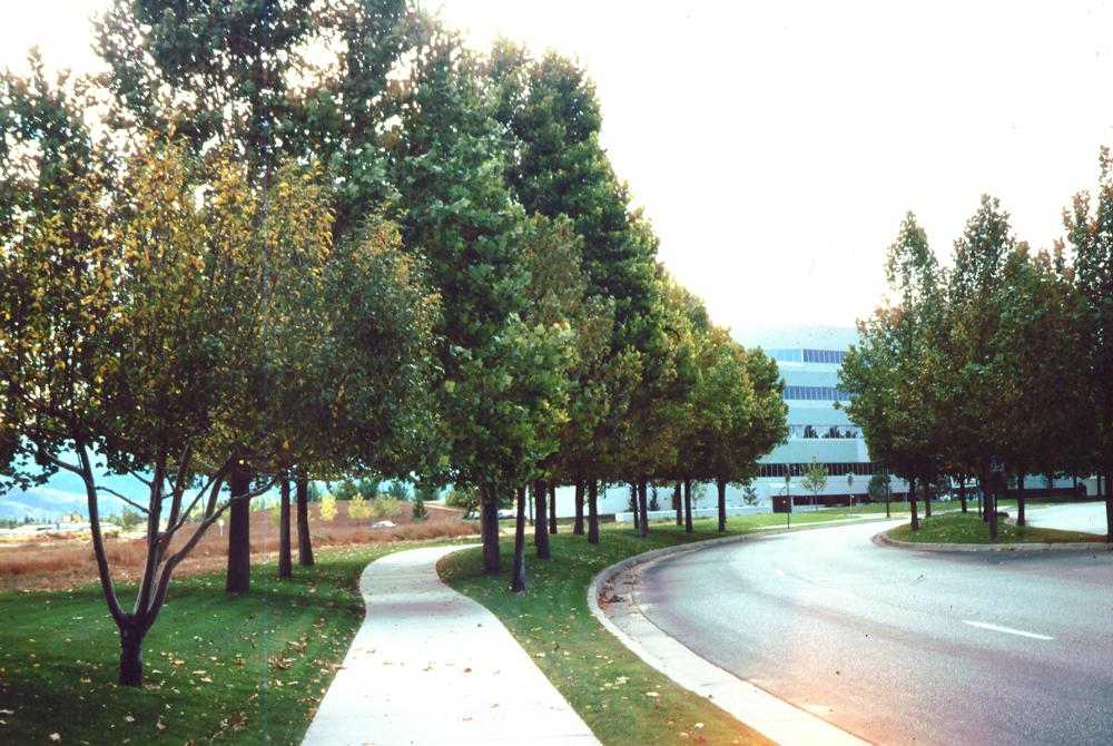 Journal Center Photo- road scene.jpg