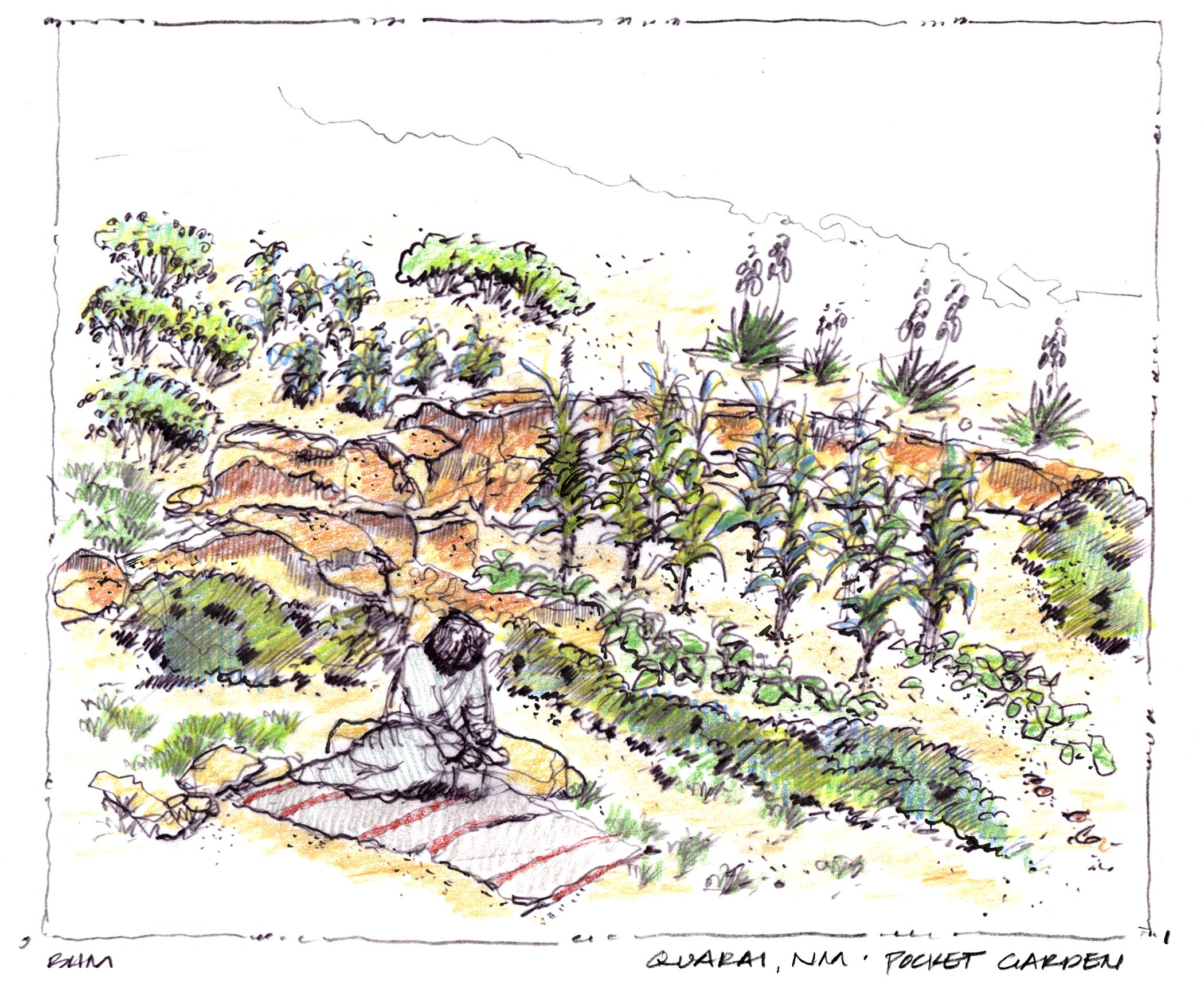 Sketch of a traditional 'pocket garden' at Salinas Pueblo Misssions