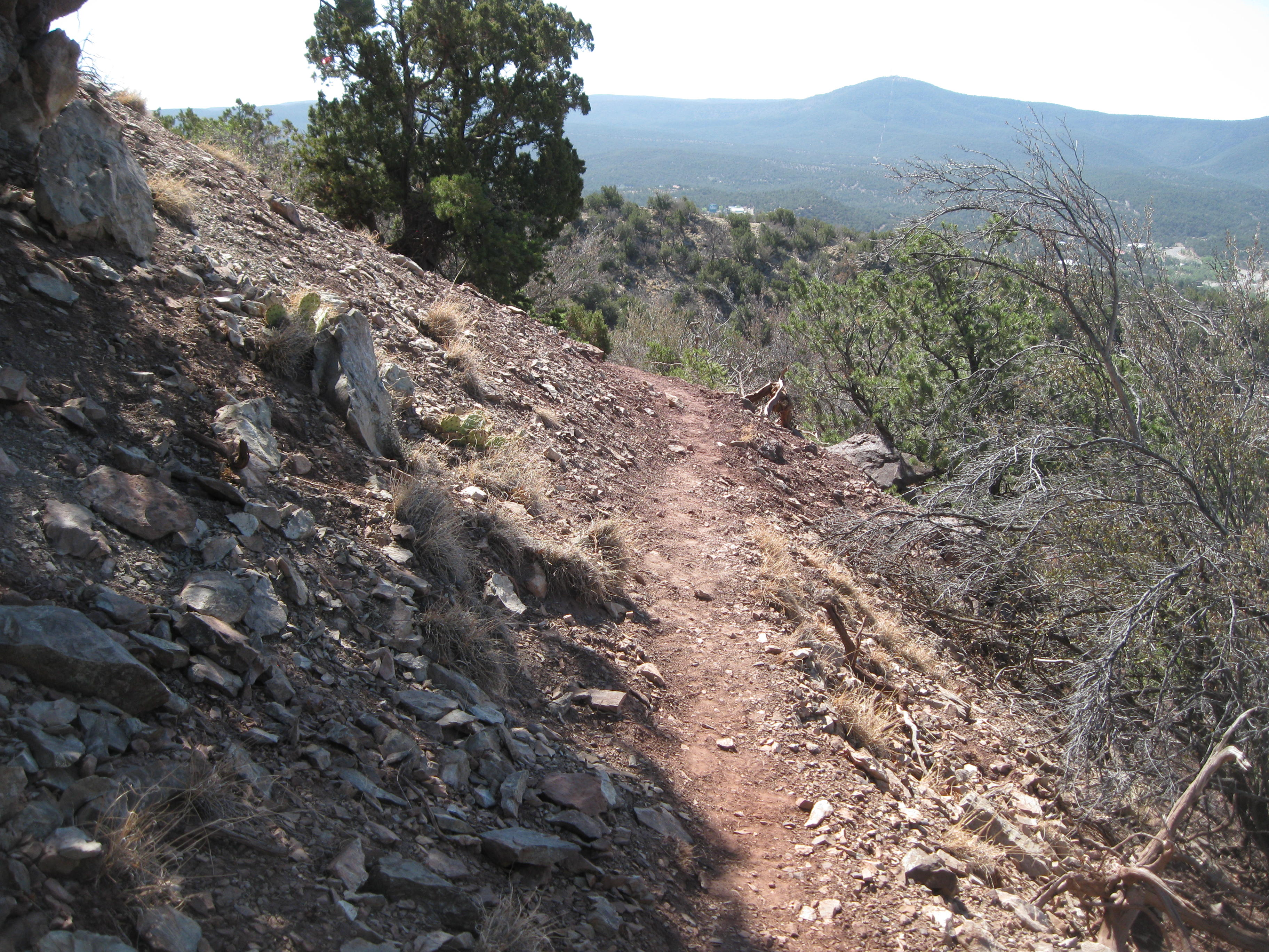 New bike trail at Carlito Springs OS built with little land disturbance