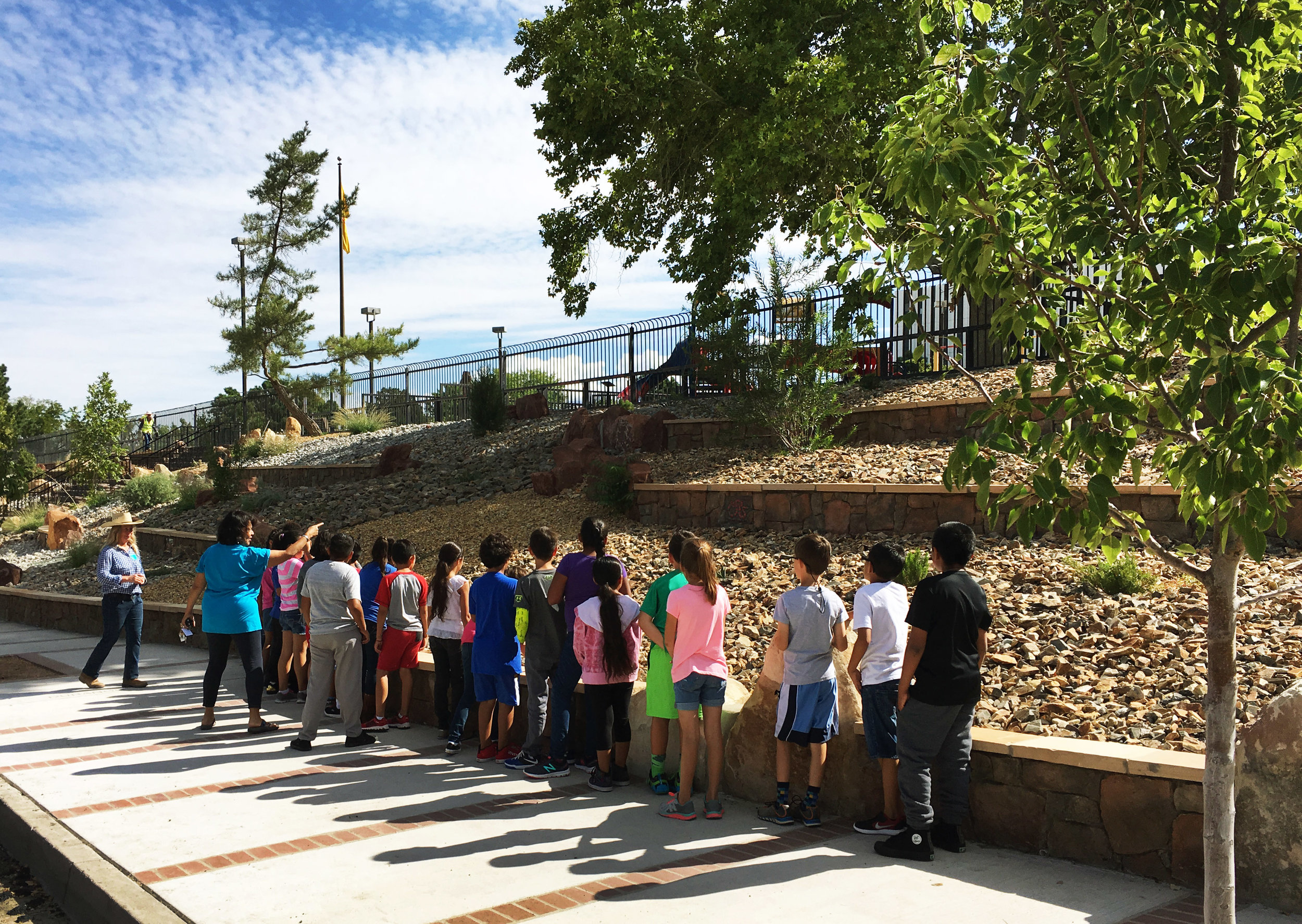 Schoolchildren taking in natural history lessons at Martineztown Park