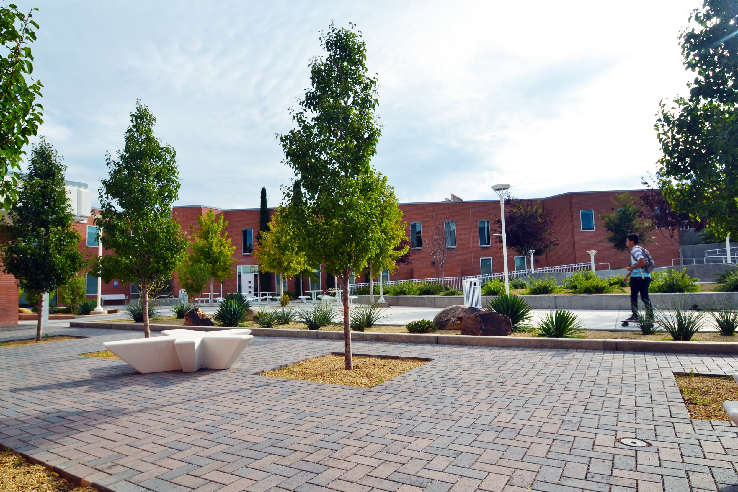 Permeable pavers help sustain healthy trees