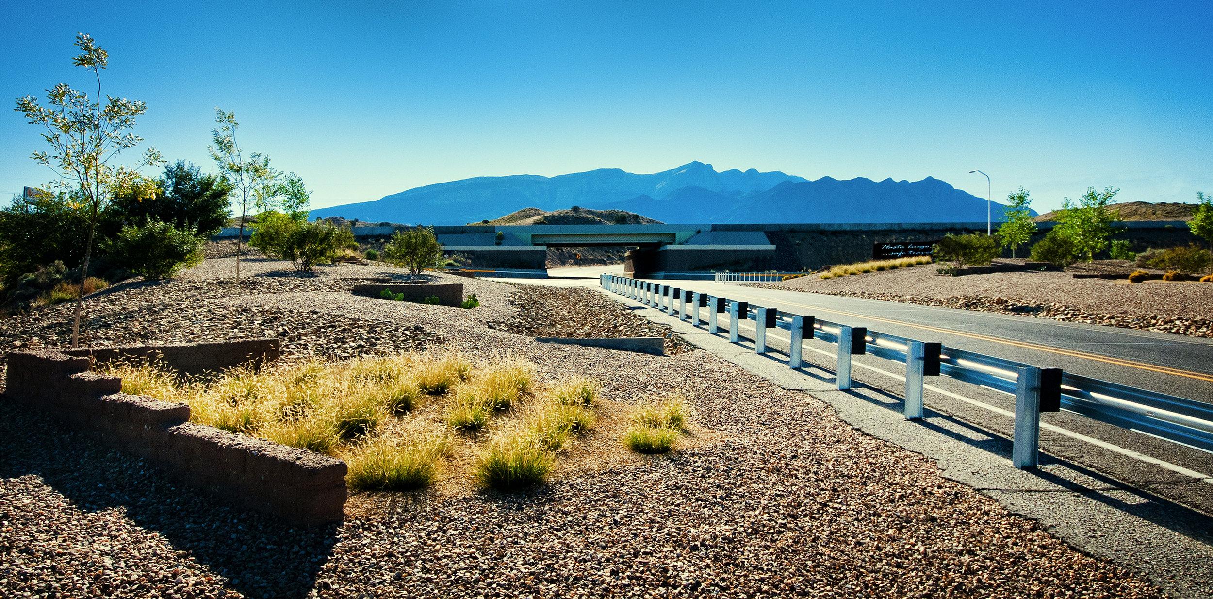This is landscape architecture... -