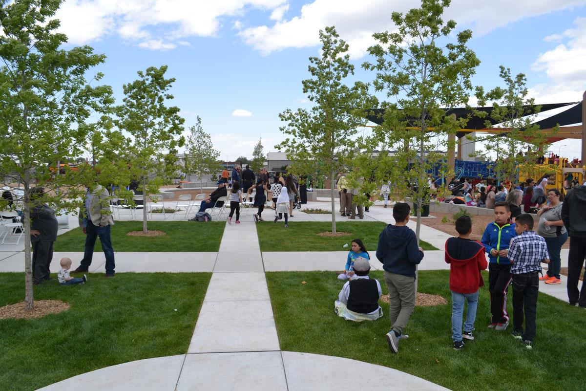 Turf plaza area with walkways