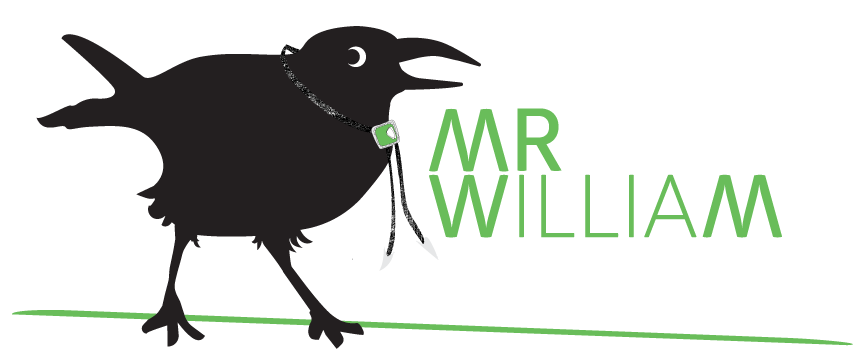 MR-WM-_F_blog-banner.png