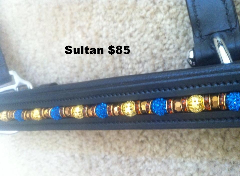 Sultan 120.jpg
