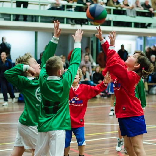 Basketbal    Groep 7/8    December
