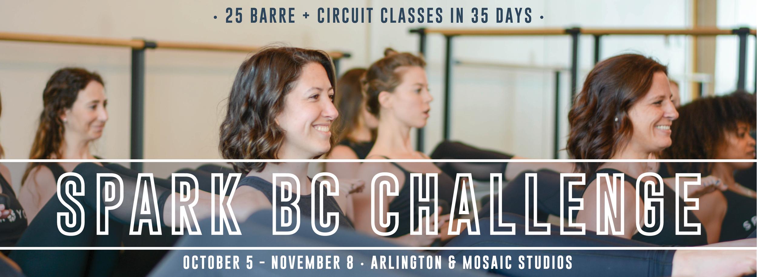 BC Challenge 2019
