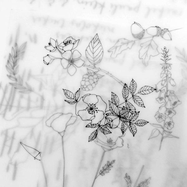 illustration process / paper & type