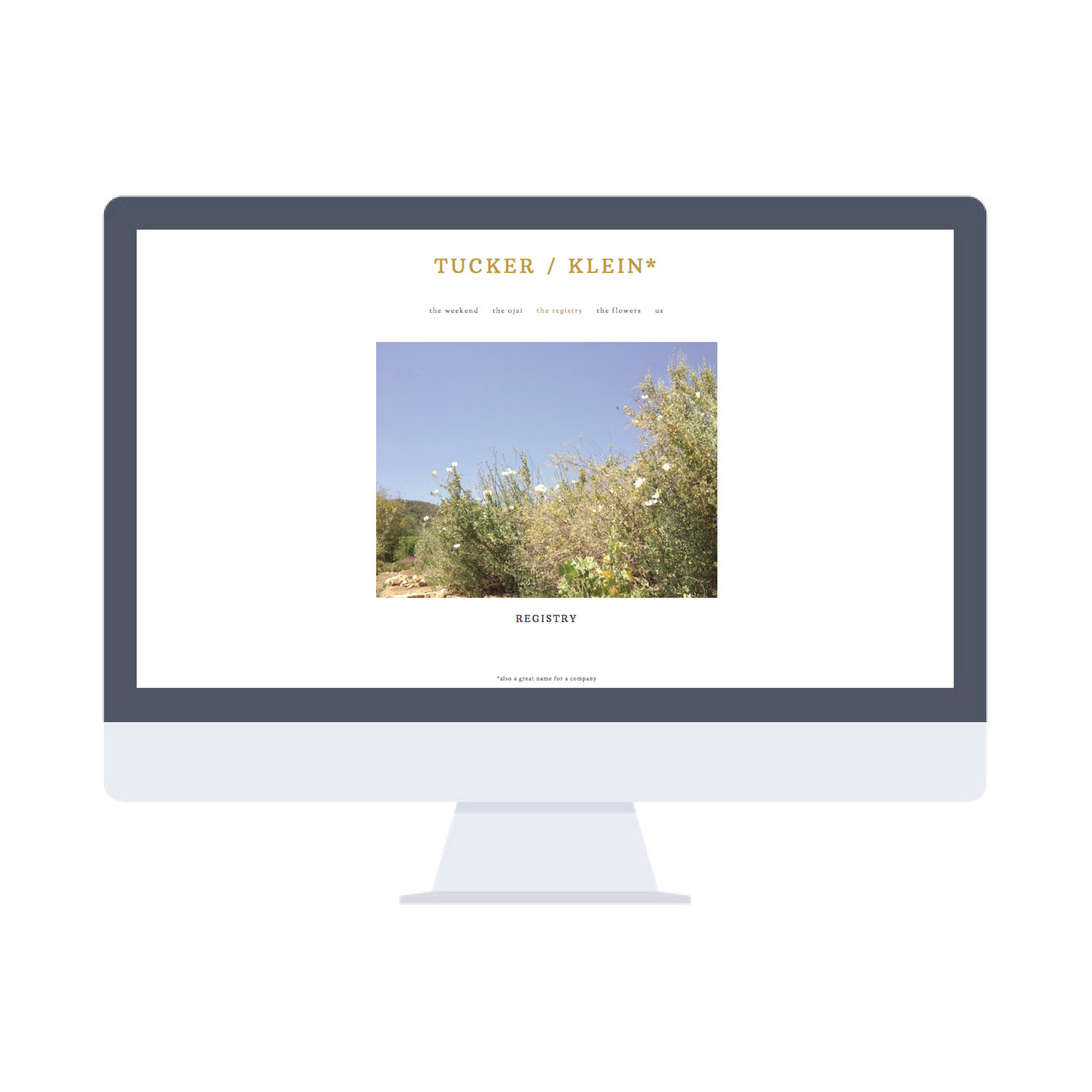 TUCKER-KLEIN web-3.jpg