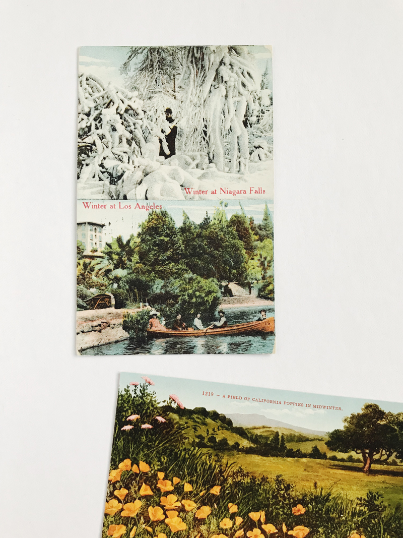 Vintage Postcard Finds / Paper & Type