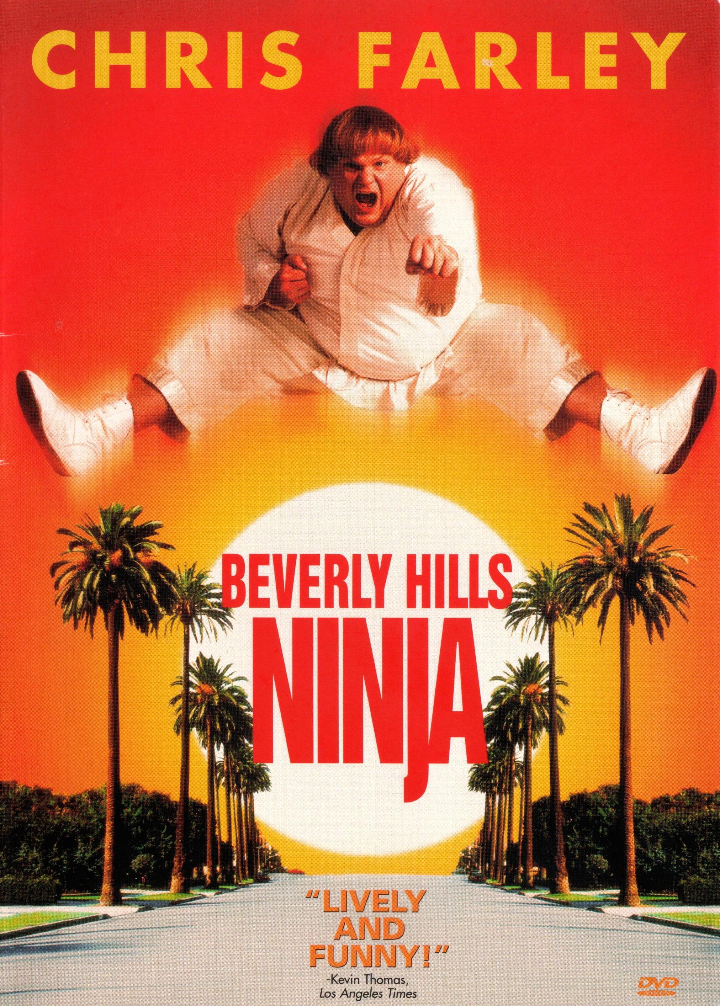 1997-Beverly Hills Ninja.jpg