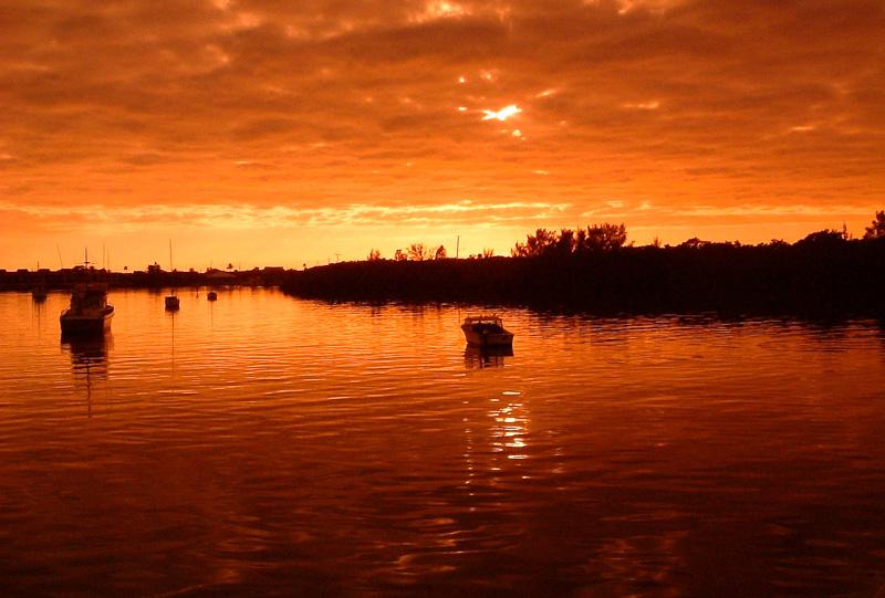 2003-12-Florida_47_Aperture_preview.jpg