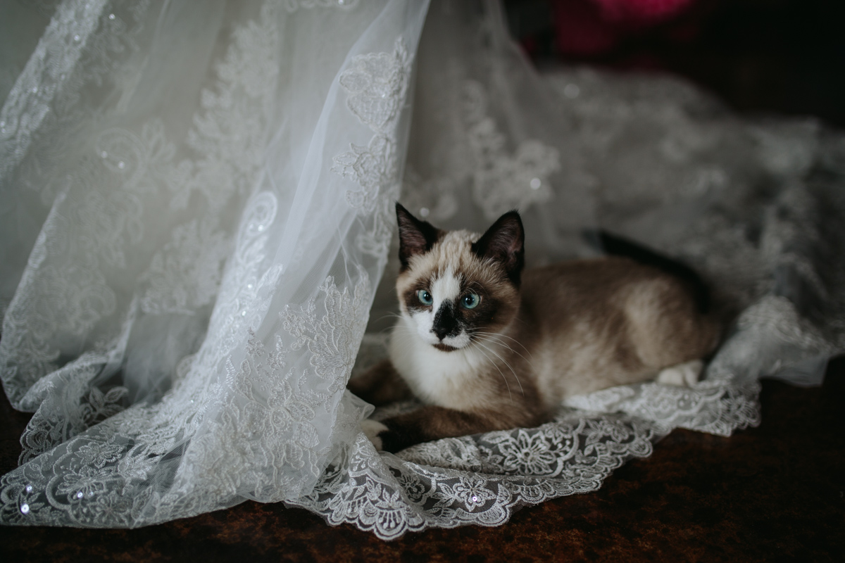 KC Wedding-070-IMG_1627.jpg