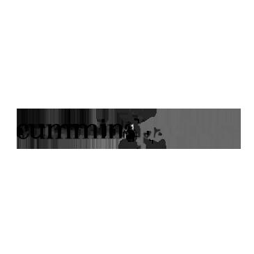 Cummins+&+Partners.png