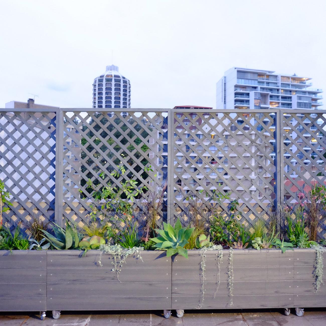 fresh_prince_rooftop1.JPG