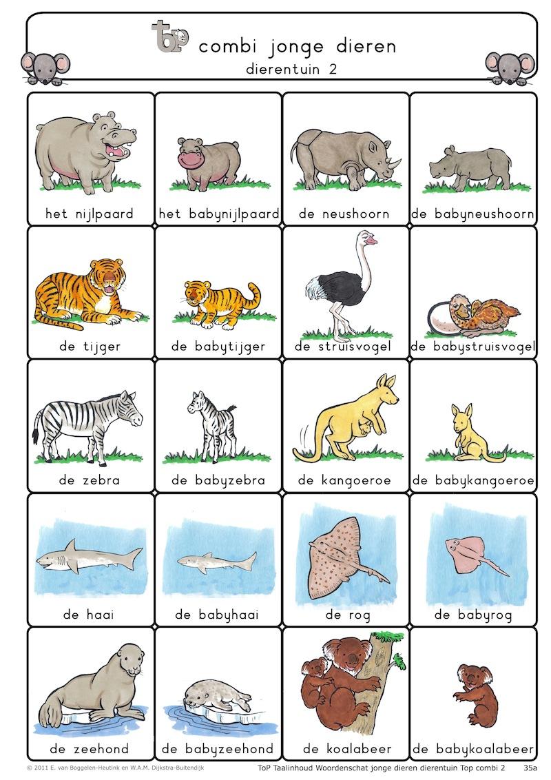 35a. Tio combi jonge dieren dierentuin 2 .jpg