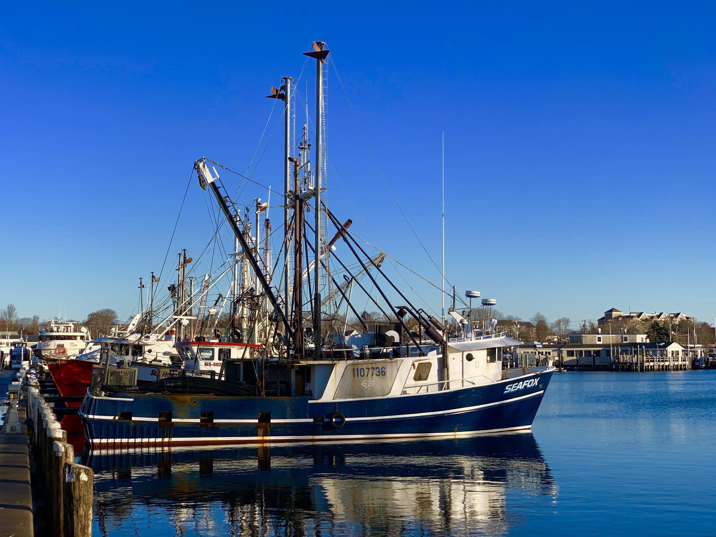 Hyannis Morning Harbor