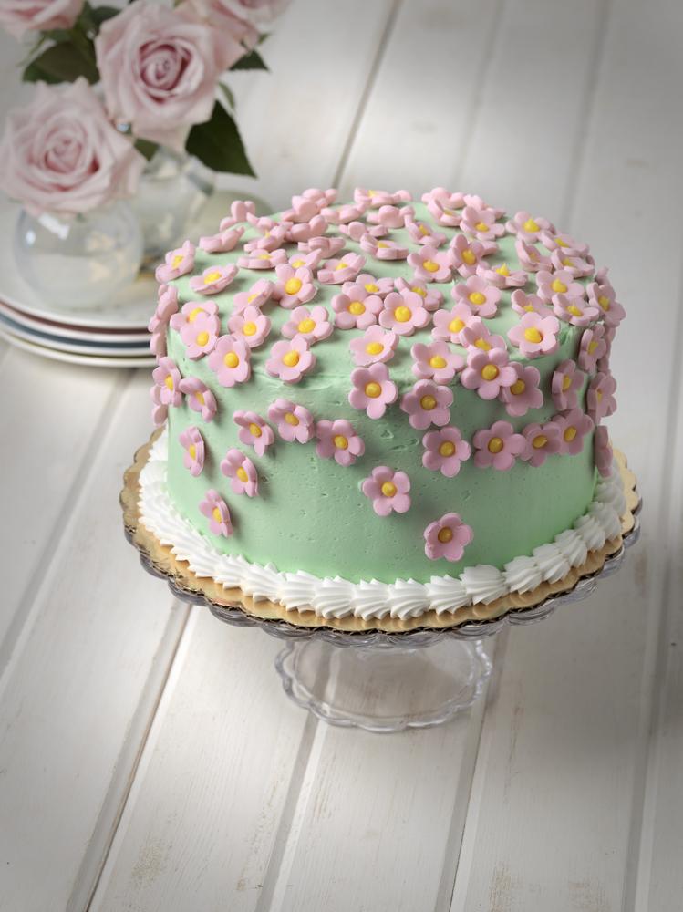 Pastel Cake Final.jpg