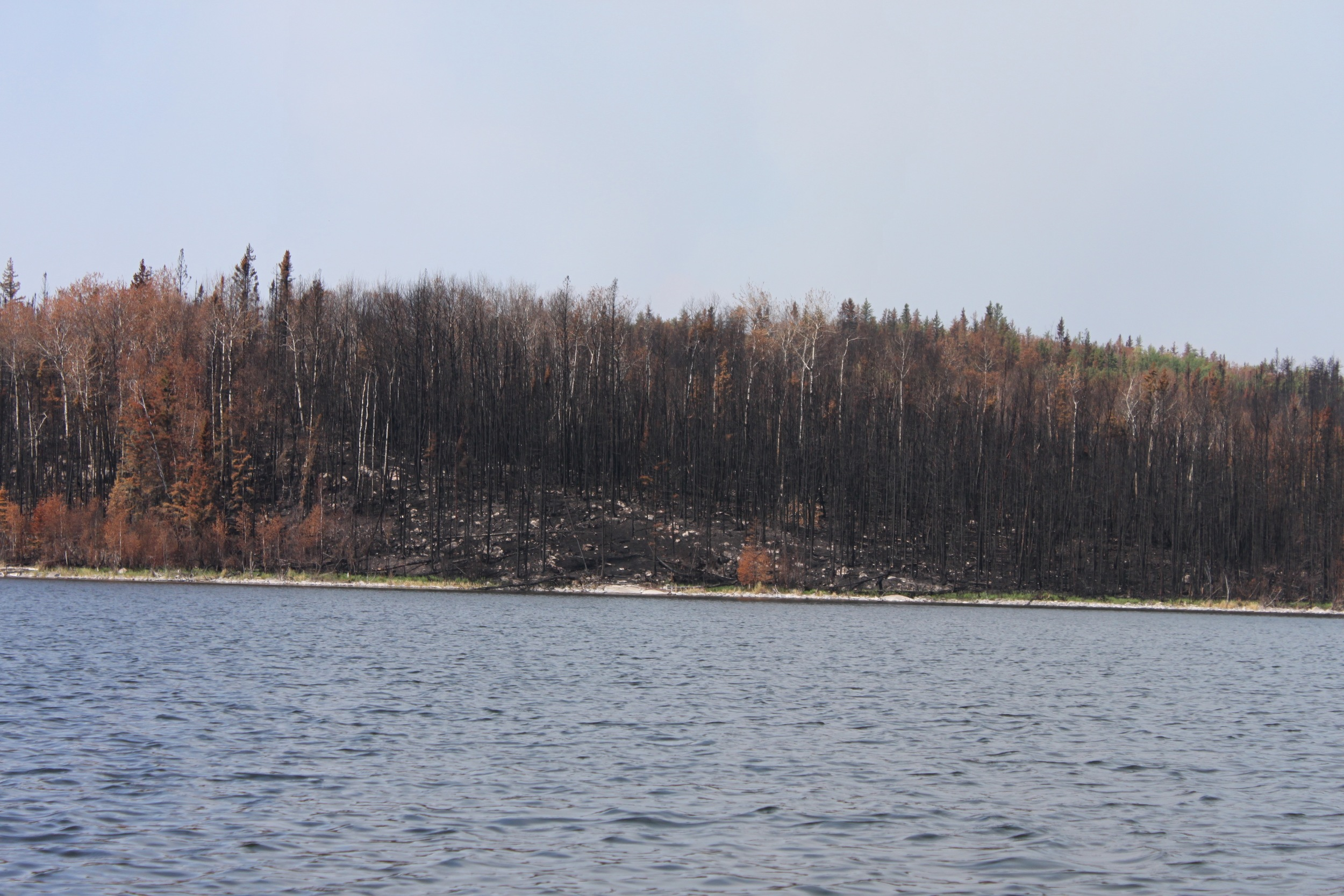 Not only bad to look at, the burn areas were especially difficultfor camping