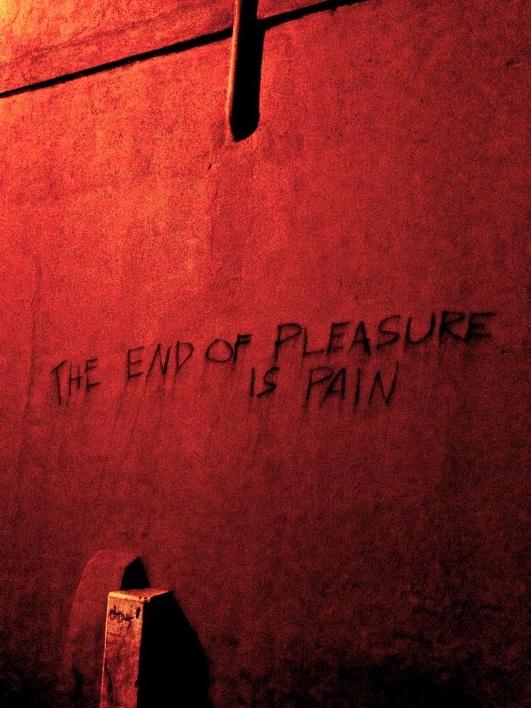 pleasurepain.jpg