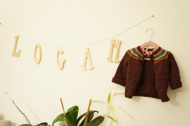 Baby Logan's yoke cardigan with random leftover yarn. (3 balls + some leftover)