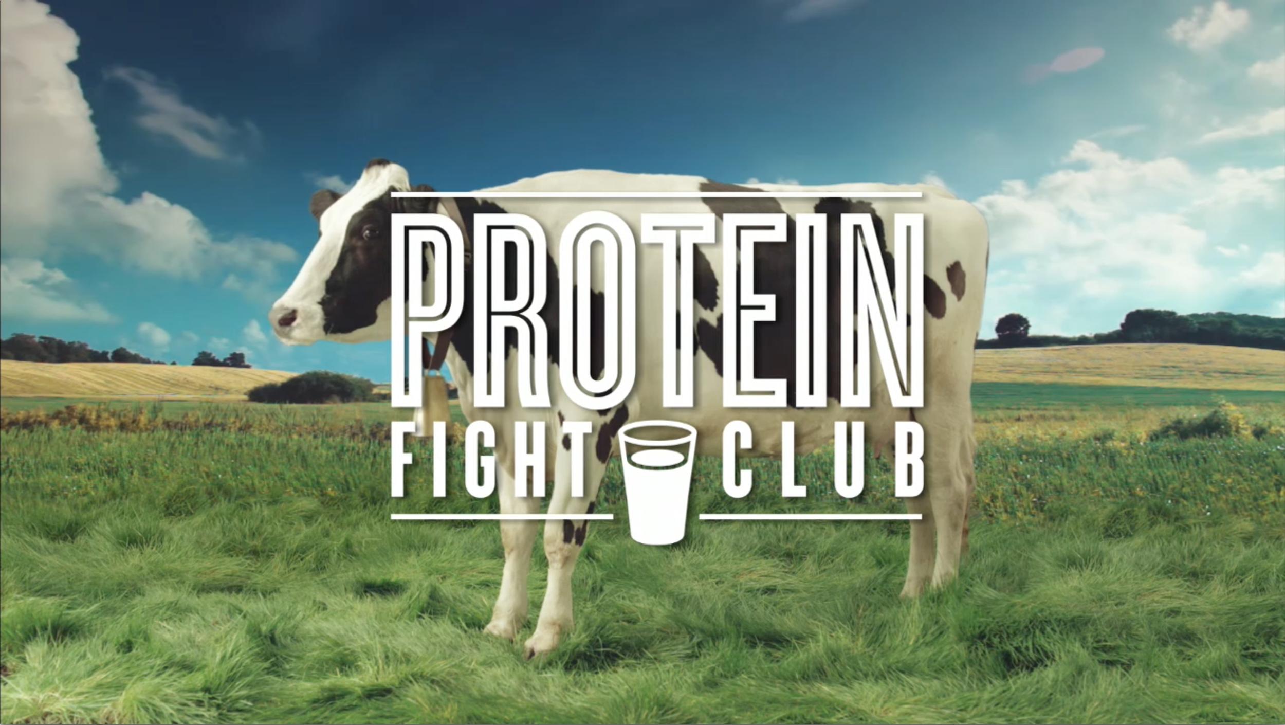 ProteinFightClub