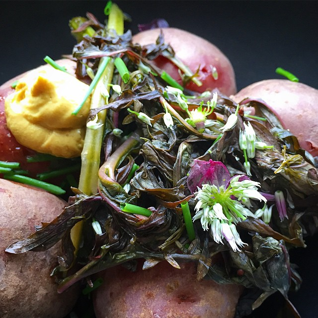 Picked up a bunch of great stuff from McCarren this morning in the rain ☔️ Boiled red potatoes, pickled mustard greens, Swiss dijon, ripped up chives and their just bloomed blossoms 🌸 Ate this with a hunk of focaccia painted with tom.jpg