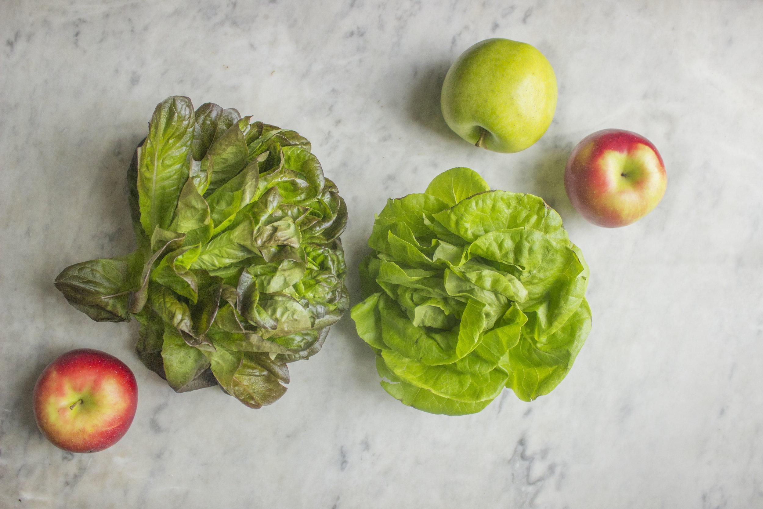 lettuce and apples.jpg