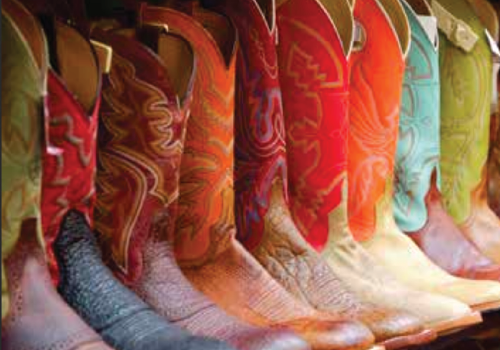 Boots 500 x 350px.png