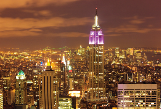 City at Night and ESB 500 x 350px.png