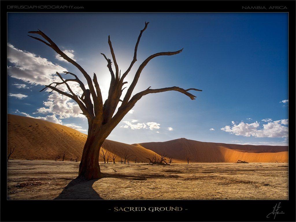 sacred-ground_patrick-di-fruscia.jpg