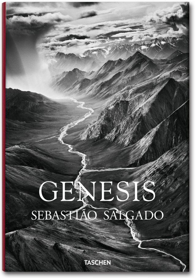 cover_fo_salgado_genesis_trade_gb_1307081418_id_618549.jpg