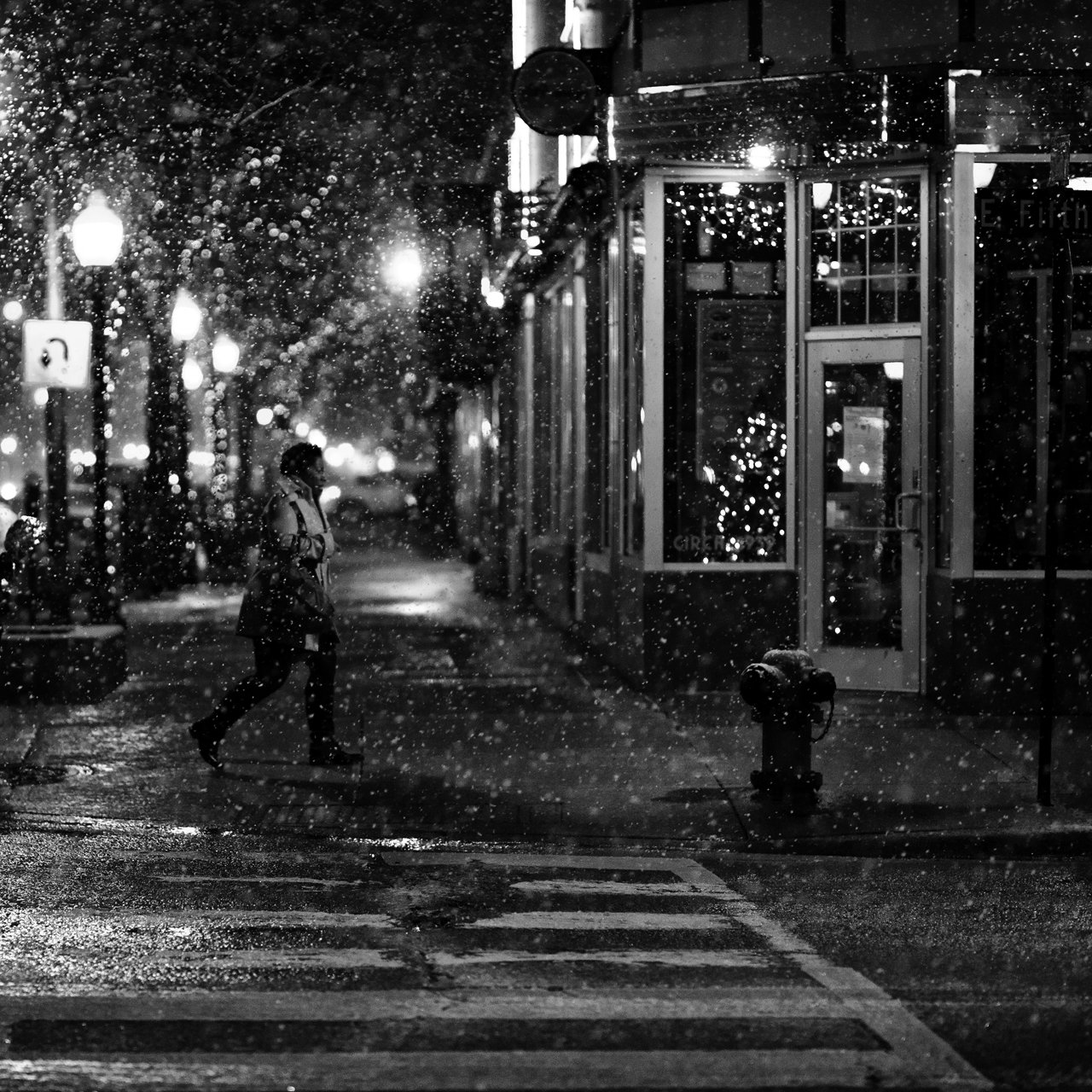 brian-day_counting-snowflakes-on-a-quiet-night.jpg