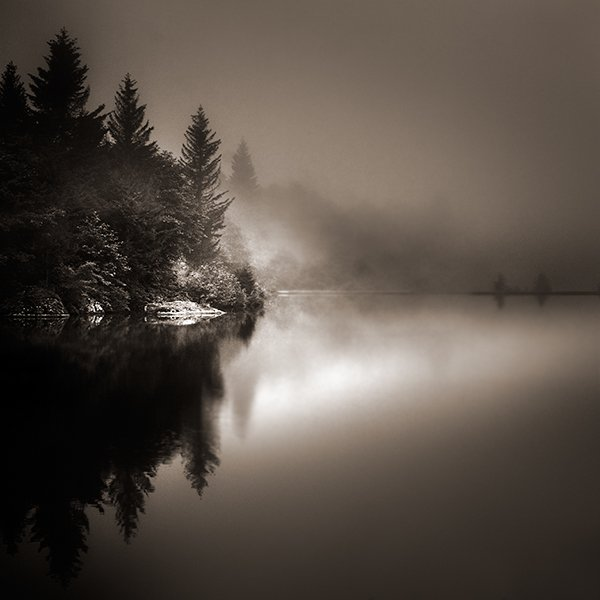 ebru-sidar_the-long-silence.jpg