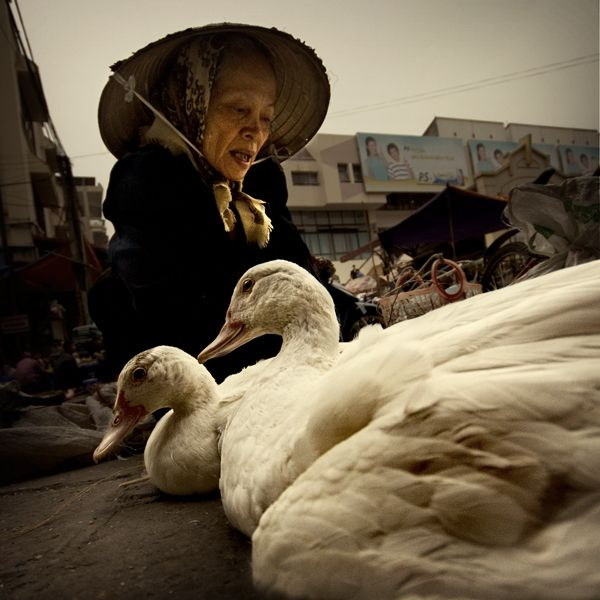 michiel-de-lange_duck-vendor.jpg
