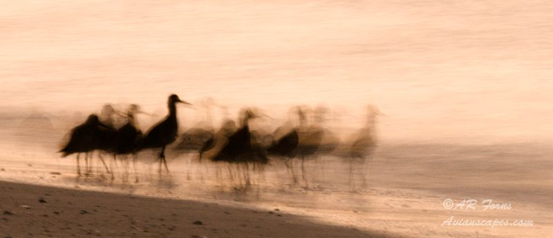 alfred-forns_group-blur.jpg