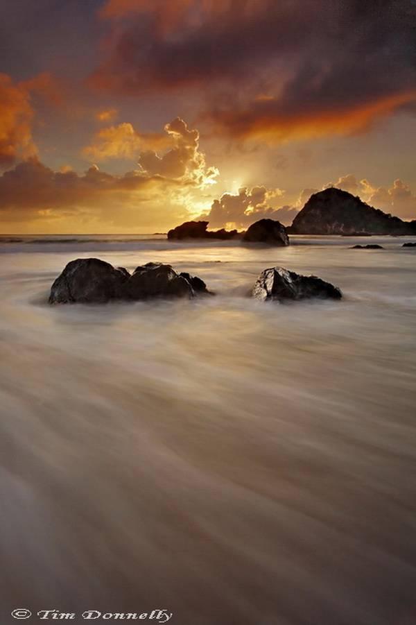 tim-donnelly_nobby-beach.jpg