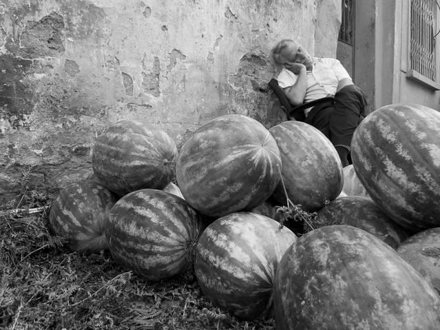 imad-haddad_sleeping-watermelon.jpg