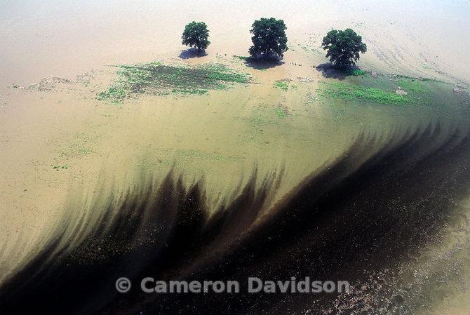 cameron-davidson-29.jpg