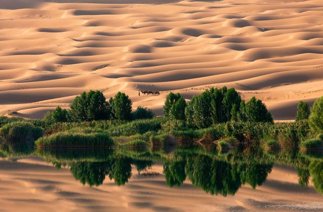 national_geographic_photography_contest_29.jpg