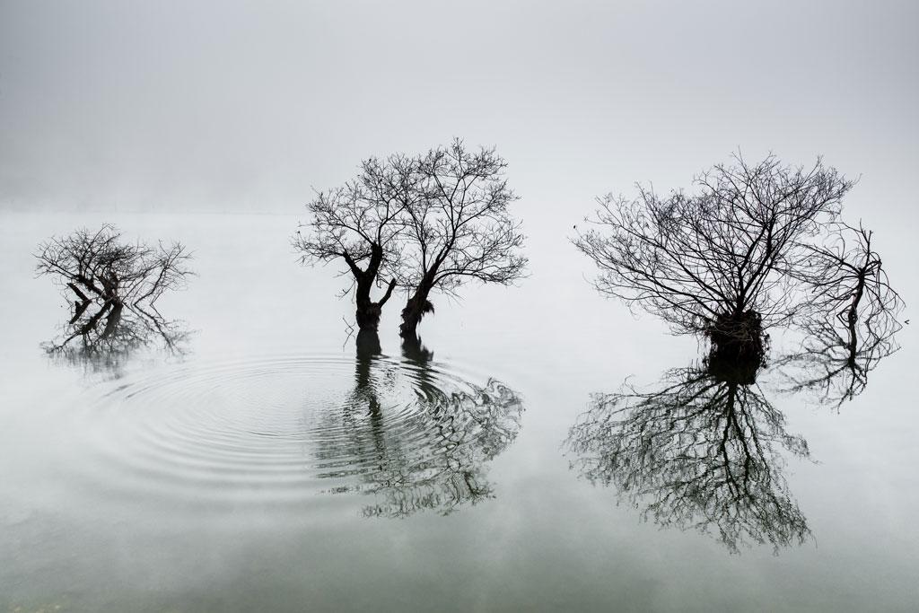 © Dowon Choi, Korea, 1st place, Korea National Award, 2014 Sony World Photography Awards