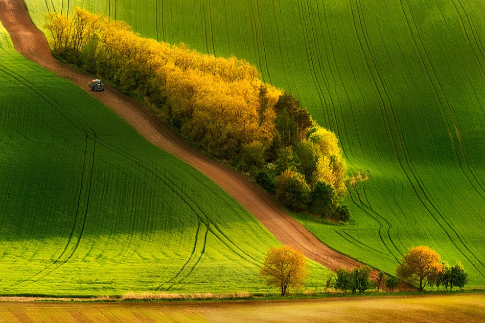 Tractor- Pawel Kucharski.jpg
