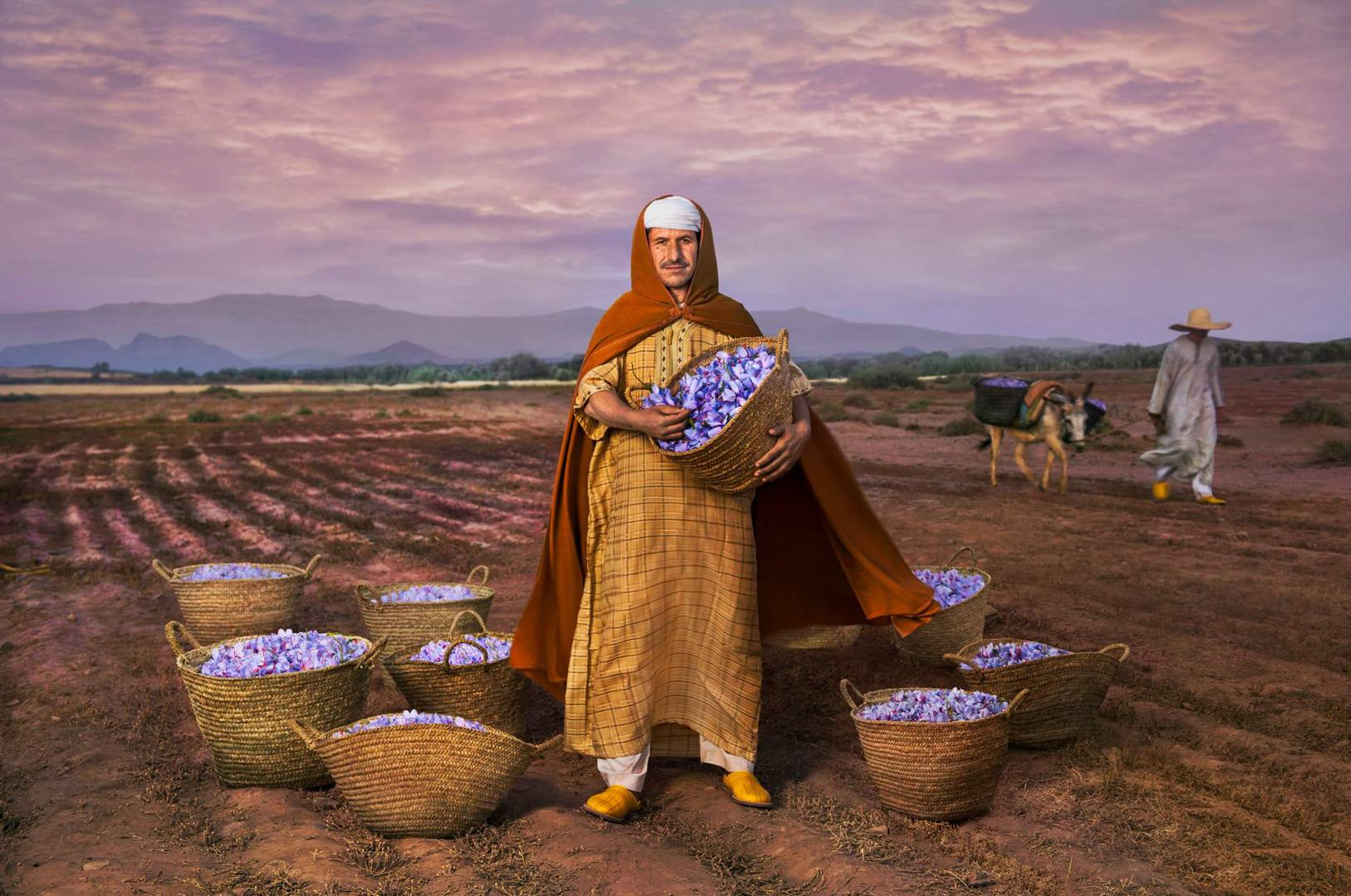 'Saffron and Freedom' - Mhamd Id Taleb, President of the saffron agricultural cooperative and Slow Food Presidium in Taliouine, a village in the south east of Morocco, the freedom of his lifestyle derives from the cultivation of saffron