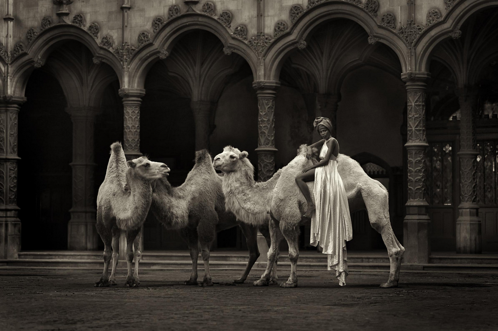 The straw that broke the camels back - Marc Lagrange