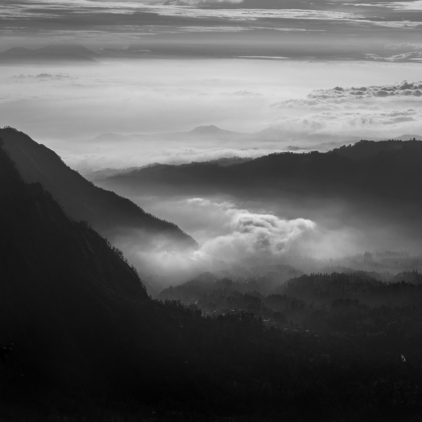 "Daniel Tjongari, ""The Journey to The Nature"" series"