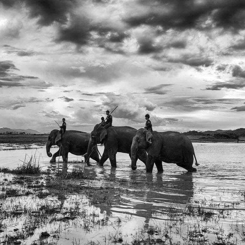 Rehahn, The Mnong people from Dak Lak, Precious Heritage series, 2016