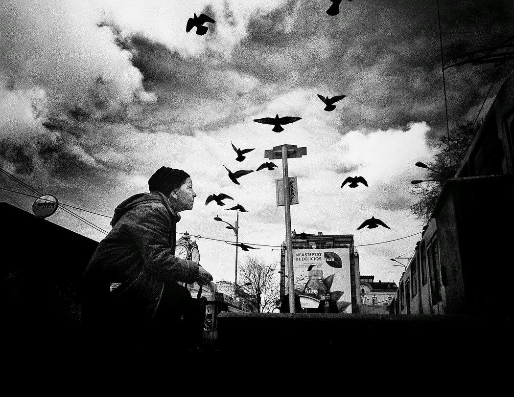 """Mirela Momanu - """"Birds Whisperer"""" -  photo source"""