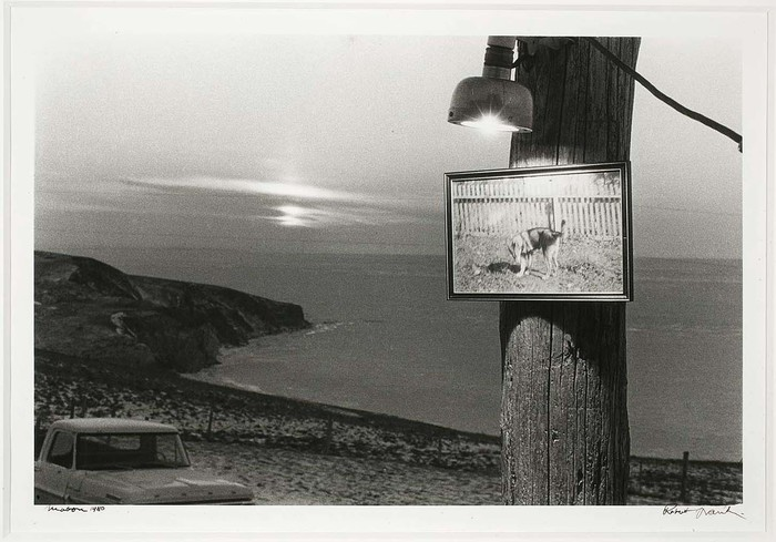 Robert Frank - Mabou (electric dog) , available at icp.org